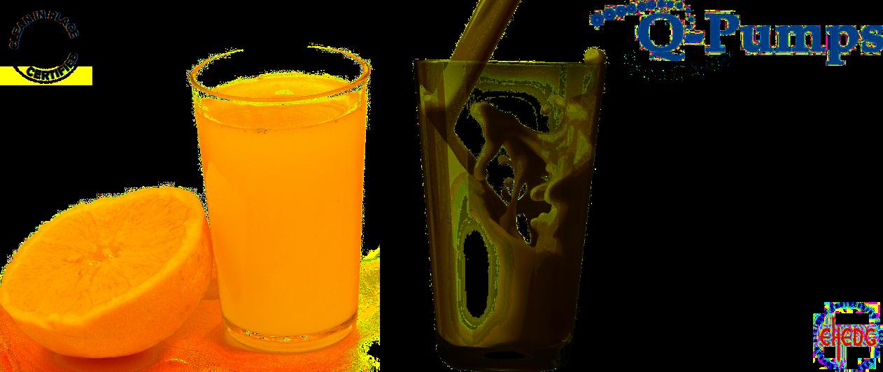 Q-Pumps LC pompen - Centrifugaal, 100% CIP, EHEDG gecertificeerd, voor alle toepassingen in drank- en voedingsindustrie.